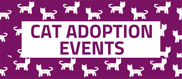 Saturday Petsmart McHenry Adoptions